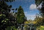 The Private, Enclosed Garden