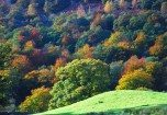 View from Loughrigg Fell in autumn