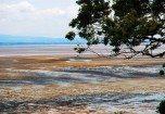Morecambe Bay near Roe Island