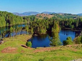 View of Tarn Hows