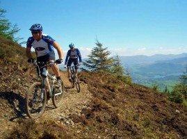 Mountain biking in Whinlatter Forest