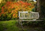 Sawmill Cottage, bench by the river