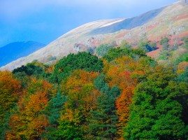 Autumn mountain scene in the Lake District