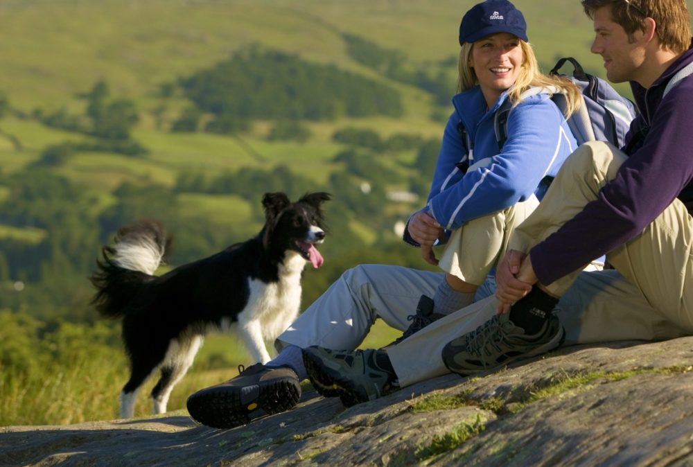 Dog and family having a picnic in the Lake District