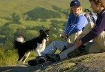 Dog and Pet Friendly Holiday Cottages in the Lake District