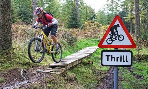 Mountain biking in Grizedale Forest