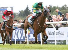 Racing down the finish straight at Cartmel Races
