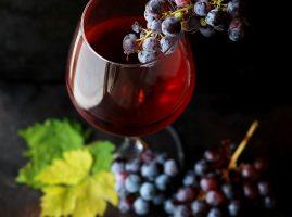 Wine or Champagne Tasting